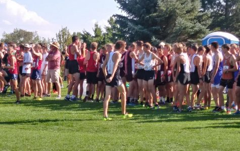 The Tiger Grizz invitational race