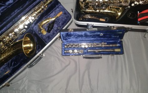 A Tenor Saxophone, Alto Saxophone and a flute are some of the instruments featured in the band.